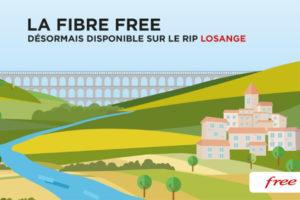 Free Losange